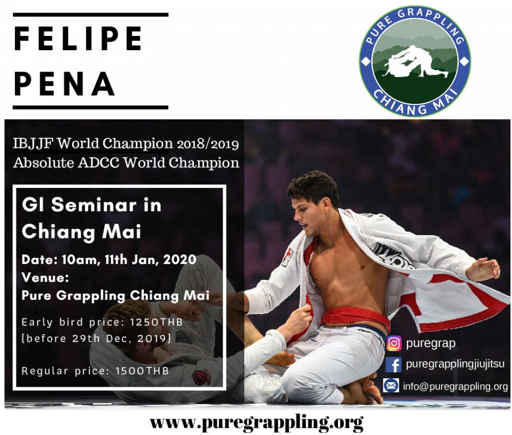 Felipe Pena Seminar_p001